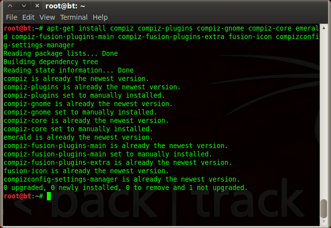 install compiz backtrack 5R3