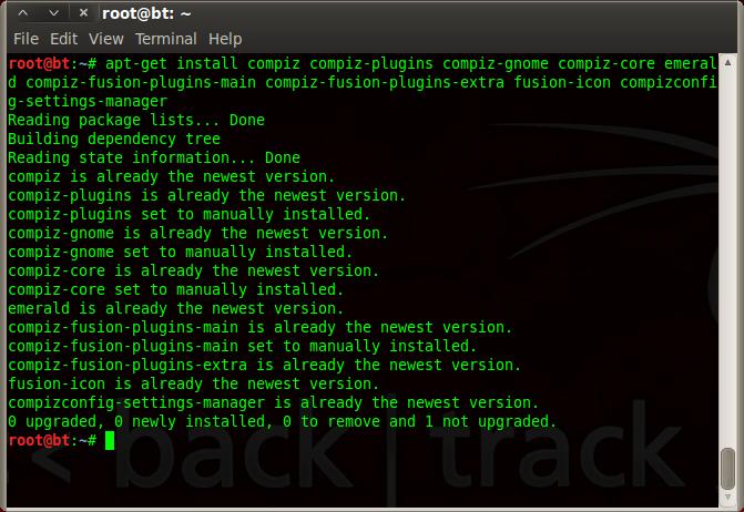 install compiz backtrack 5R3