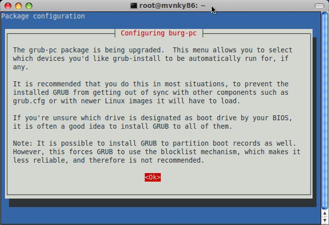 configuring burg-pc install