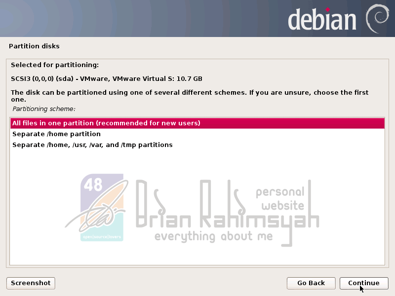 Debian 7 partition disk all